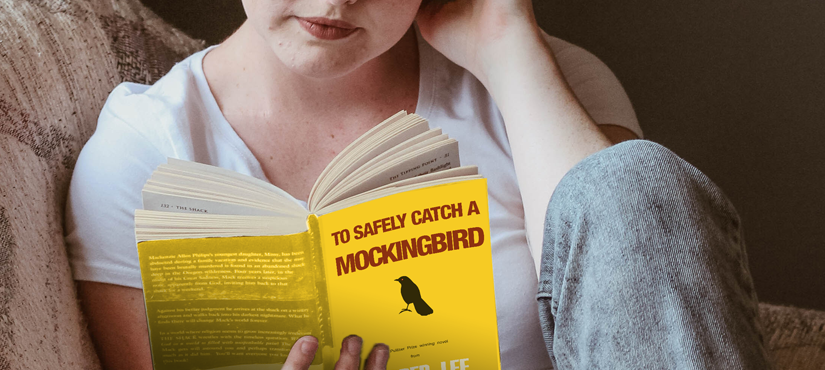 To safely catch a mockingbird! World Book Day 2018!