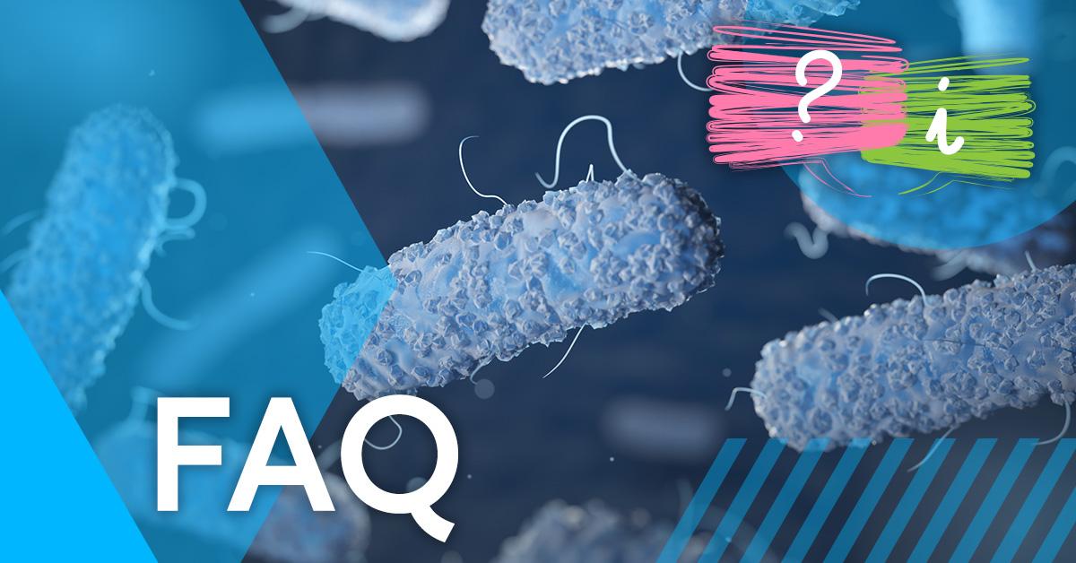 What is Legionella?
