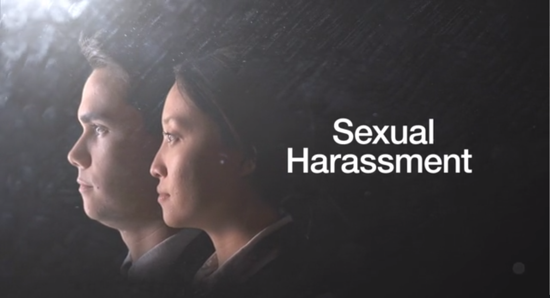 Snippet from our Sexual harassment course