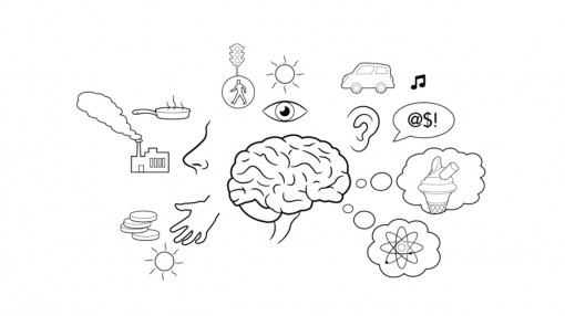 Diagram of the various senses and the brain as part of equality and diversity training