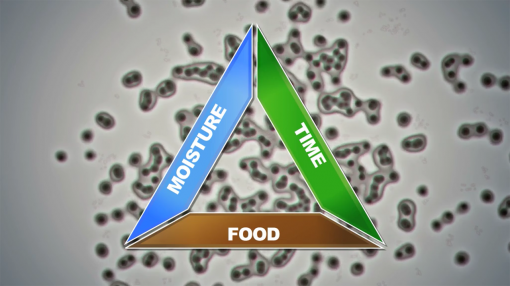 Diagram labelled moisture, time, and food, to show components of food poisoning for food safety and hygiene level 1 training