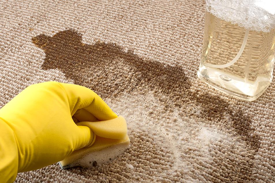 Spill Kit Training: Bodily Fluids