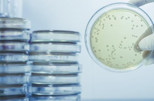 Legionella Bacteria - Legionella Awareness Training